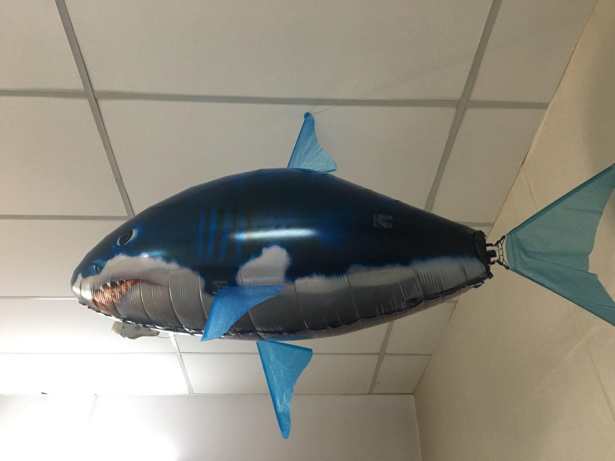 Bóng cá bay điều khiển từ xa bằng khí heli
