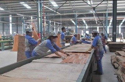 NH3 trong ứng dụng chế biến gỗ