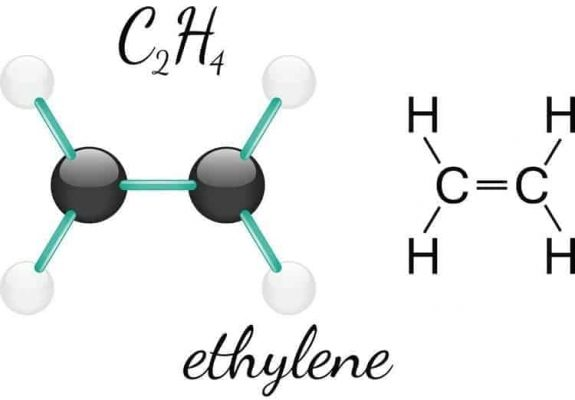 khí ethylene là gì