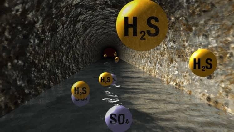 khí h2s sinh ra từ đâu