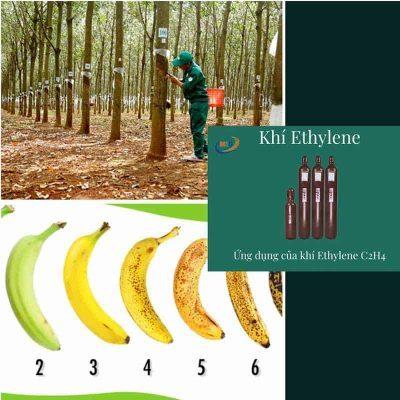 Ứng dụng khí ethylene c2h4