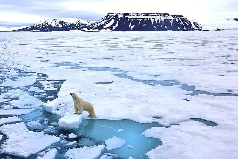 Hiện tượng băng tan do hiệu ứng nhà kính